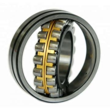 2.559 Inch | 65 Millimeter x 5.512 Inch | 140 Millimeter x 2.313 Inch | 58.75 Millimeter  CONSOLIDATED BEARING A 5313 WB  Cylindrical Roller Bearings