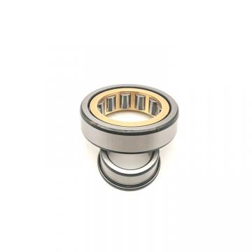 8.661 Inch   220 Millimeter x 11.811 Inch   300 Millimeter x 3.15 Inch   80 Millimeter  CONSOLIDATED BEARING NNC-4944V  Cylindrical Roller Bearings