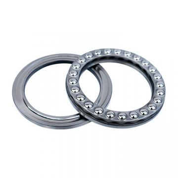 NTN 1311  Single Row Ball Bearings